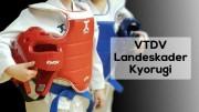 VTDV-LK-Kyorugi