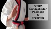 VTDV-LK-Poomsae